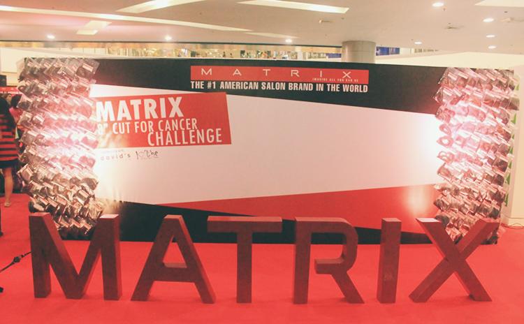 matrix cut for cancer 2015